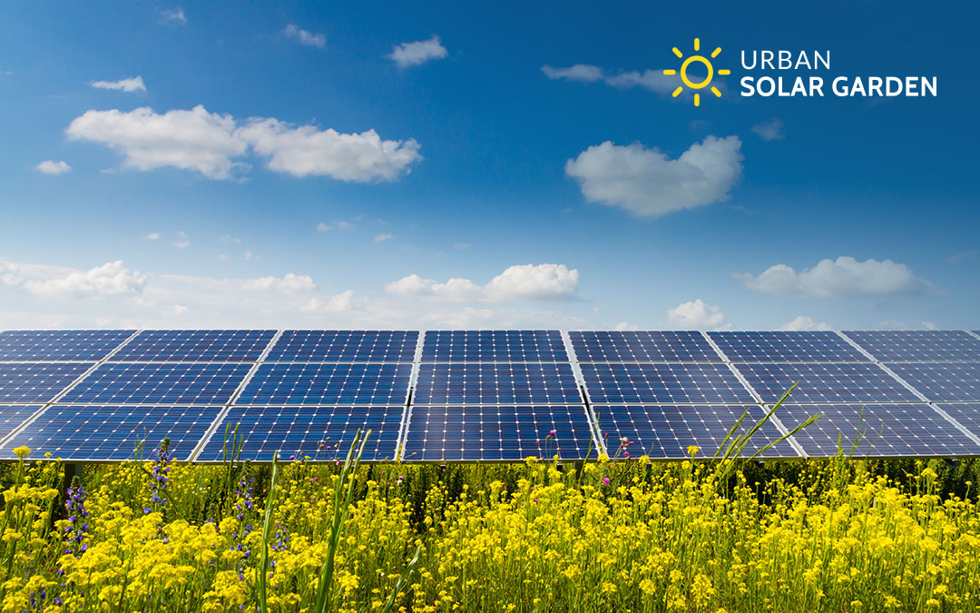 News Articles Featuring The Urban Solar Garden